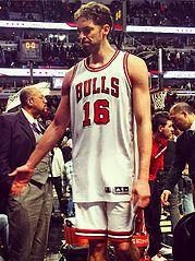 Paul_Gasol_high_five_with_Stryde_at_the_end_of_the_Chicago_Bulls_game_(cropped)